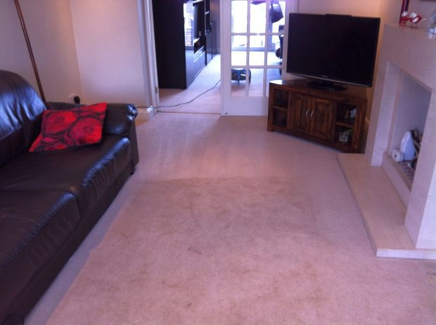 Carpets deep cleaned in the home